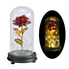 WR Gold Plated Rose Glass Lamp LED Lighted Golden Flower Christmas Gift For Her