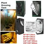 Horticulture Reflective Hydroponic Plant Veg Flower Plant Growing Tent Room
