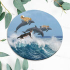 Dolphin Animal Cat Kitten Gift Mouse Pad Mat Office Desk Table Accessory Gift