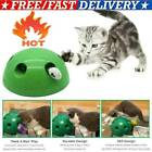 Play Interactive Motion Cat Toy Mouse Tease Electronic Pet Toys Fun TOYS