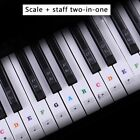 Piano Keyboard Stickers Decal Label Note 37 49 61 88 Keys For Beginners Learning