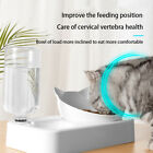 PET DOG CAT FEEDER BOWL FEED FOOD WATER DISH DUAL BOWL RAEISED STAND 15° Tilted
