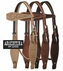 Showman Argentina Cow Leather Western Headstall w/ Floral Tooling