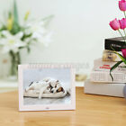 """8"""" LCD Digital Photo Frame Electronic Picture Video Player Movie Album Dispaly"""