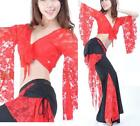 Sexy Belly Dance Costume Lace Flared Top & Pants 9 Colors