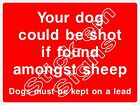 Your dog could be shot if found amongst sheep Dogs on lead - COUN0068