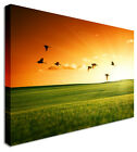 Flock of Birds Sunset Landscape Canvas Picture - Large+ Any Size