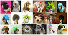 Pet Supplies lovely pet dog / cat wigs