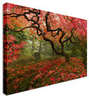 Large Abstract Rustic Landscape Canvas Wall Art Pictures