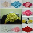 Baby/Girl/Ladies Satin Flower Hair Head band New