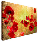 Vintage Borwn Poppy Picture Field  - Canvas Wall Art For Home Interiors