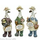 Lady Gardener Small Message Duck - 3 Fun Gardening & Floral Designs Available