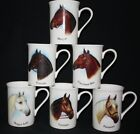 6 INDIVIDUAL EQUESTRIAN HORSES HEADS FINE BONE CHINA MUGS CUP GIFT SET NEW