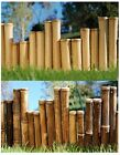 Bamboo Commercial Grade Garden Border Edging- Choose from 2 Colors and 3 Lenghts