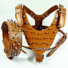Brown Leather Spikes Studded Dog Harness+Collar Set Pit Bull Dog Harness Collars