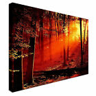 landscape art  woodland Canvas Wall Art Print Large + Any Size