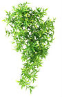 Croton Vine Reptile Vivarium Aquarium Fish Tank Terrarium Decoration in 2 Sizes