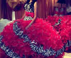 New Fashion Zebra/Red Quinceanera Dresses Ball Gown Prom Ball Formal Party Dress
