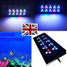 More images of UK STOCK 90W CREE LED Aquarium Light Dimmable Reef Coral Marine Fish Tank