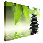 Grean leaves over zen stones Canvas Art Cheap Wall Print Home Interior