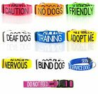Colour Coded Wide Semi Choke Dog Collar and Lead Sets by Friendly Dog Collars