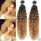 "12""-30""Brazilian Ombre Human Hair Extension 1B/33/27#Curly Wave Human Hair,50g"