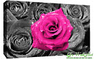 Floral Pink Rose on Bed of Roses Abstract CANVAS WALL ART Picture Print