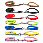 Reflective Nylon Collar & Walking Leash Set Small Dog Cat Puppy Pet with Bell