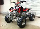 DIRT AUTO QUAD BIKE ATV BUGGY 110cc PEEWEE CYCLONE-II TWIN MUFFLER REMOTE STOP