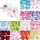 50pcs Hawaiian Artificial Plumeria Frangipani Flower Heads 76x35mm Wholesale