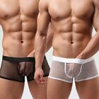 VARIOUS Men's Sexy Transparent Spandex Fishnet Boxer Shorts - Adult Underwear