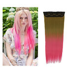Ombre Synthetic Straight Clips on Hair Extension 24'' 5 Clips Two Tone Hairpiece