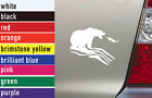 Fishing Grizzly Hunting Vinyl Sticker Decal Car-Truck Laptop-Netbook 1474