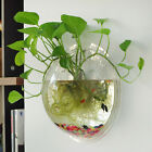 Hanging Flower Pot Glass Ball Vase Terrarium Wall Fish Tank Aquarium Container