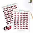 Carolina Hurricanes Planner Stickers -Perfect for all Planners like Erin Condren $3.5 USD on eBay