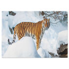 Tiger Tempered Glass Chopping Board