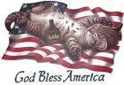 Cat & American Flag Beach Towel Shirt, T Shirt, Patriotic, 4th of July, Sm - 5X