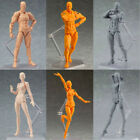 Figma Archetype He/She Body kun DX SET PVC Action Figure Anime Model Body Toys