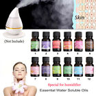 12 Scent Soluble Oil Pure & Natural Fruit Plant Essential Oils Water Beauty 10ml