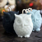 3D Owl Candle Molds Soap Mold Bird DIY Craft Wax Resin Mould Food Grade Silicone