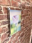 Clear wall mount Poster Holder with wall fittings pks 1,5 or 10 A4, A3 OR A2