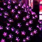 LED Solar String Light Waterproof 50Pc Outdoor Indoor Wedding Holiday Decoration