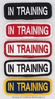 SEW ON IN TRAINING TITLE PATCH service dog 1X3 Danny & LuAnns Embroidery