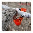 Lot Poultry Water Drinking Cup Chicken Hen Fowl Plastic Automatic Drinker Red GP