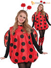 Ladies Darling Ladybird Bumble Bee Costume Adults Bug Fancy Dress Outfit Insect