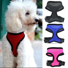 Pet Control Harness for Puppy Dog & Cat Soft Walk Collar Safety Strap Mesh Vest