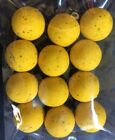 MAINLINE HIGH IMPACT HIGH LEAKAGE PINEAPPLE FLOATING POP UPS -12 x 15mm BOILIES