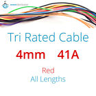 Red 4mm 41AMP 12V Tri Rated Cable Panel Wiring Loom Automotive Marine Auto Wire