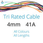 4mm 41AMP 12V Tri Rated Cable Panel Wiring Loom Automotive Marine Auto Wire 240V
