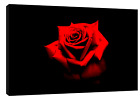 RED ROSE   PHOTO  PRINT ON WOOD  FRAMED CANVAS WALL ART